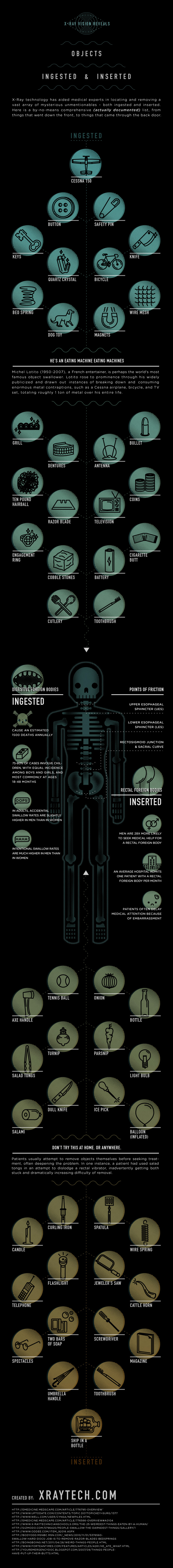Objects Ingested and Inserted Infographic